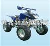 xy15沙滩车模具
